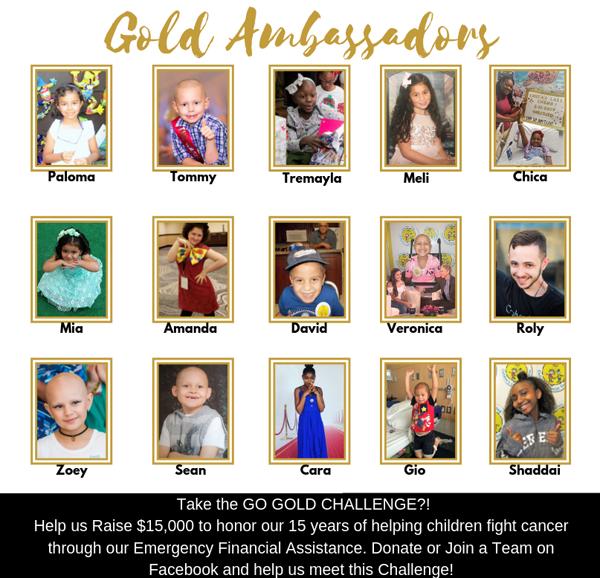 Snapshot Gold Ambassadors